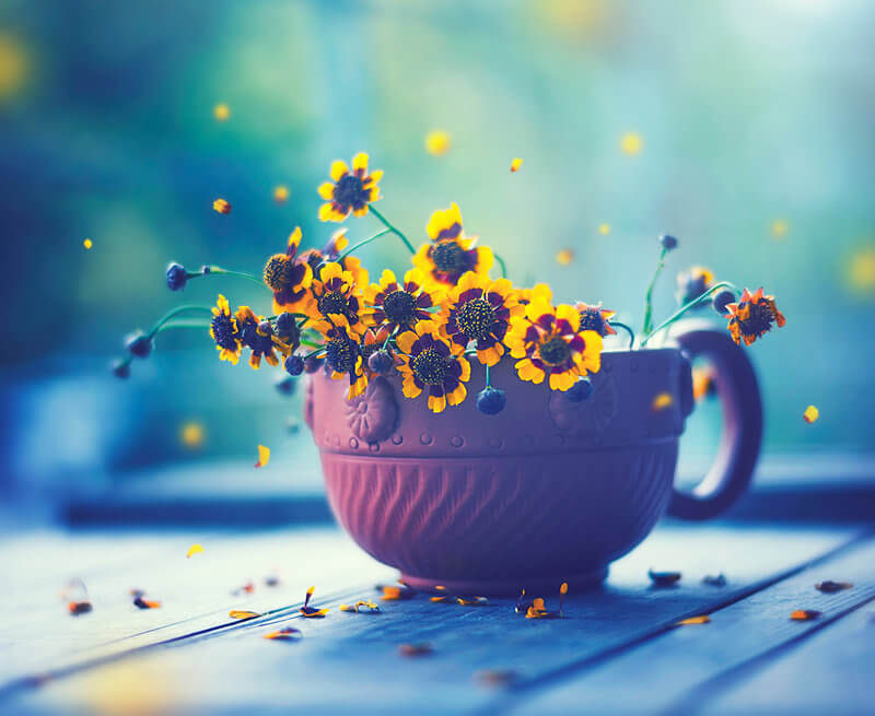 cup-of-spring-happy-everyday-by-arefin03-on-deviantart