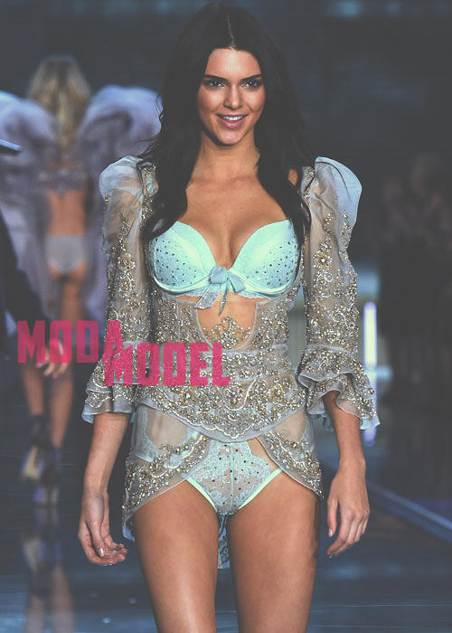 Kendall-Jenner-Heat-Up-the-Runway-in-Victorias-Secret-Fashion-Show